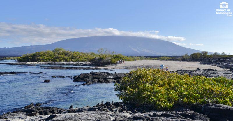 Galapagos Photo Expedition In Fernandina Island