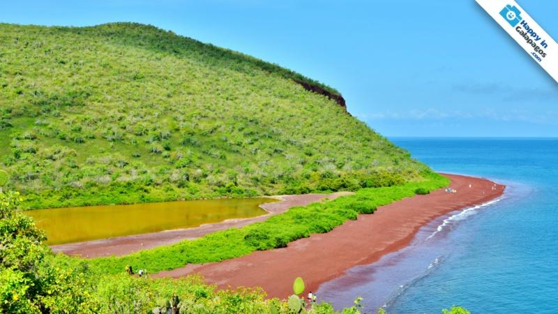 Galapagos Islands A Wonderful Excursion In Rabida Island