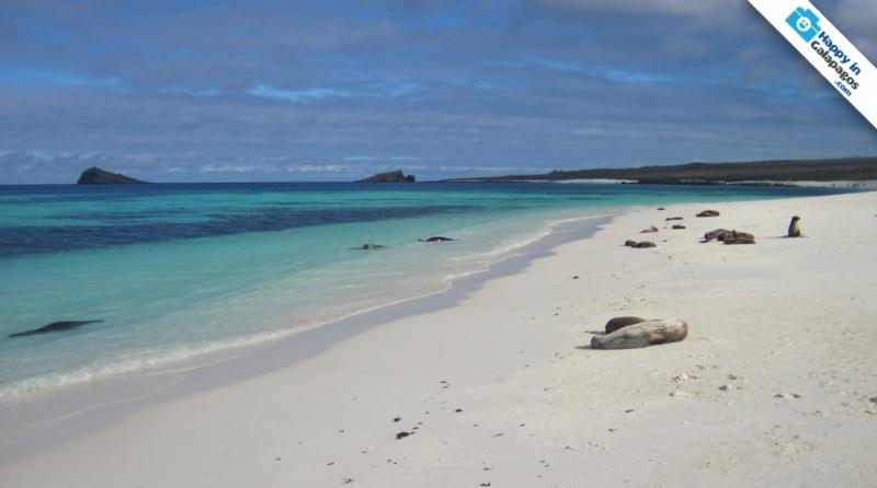 Galapagos Islands A Wonderful Beach Of Gardner Bay In