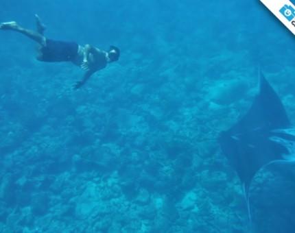 Galapagos Photo A Closer Look…