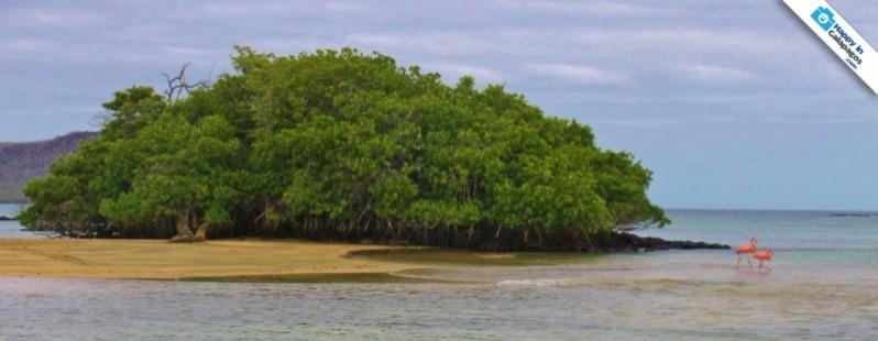 Galapagos Photo Discovering the Galapagos' charm