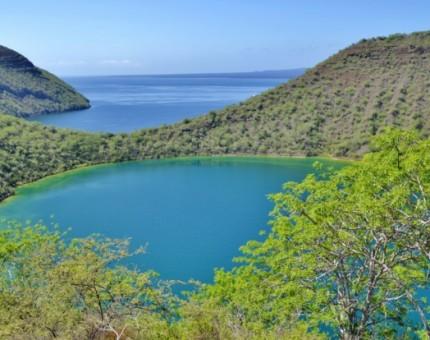 Galapagos Photo The Galapagos' stunning natural wonders