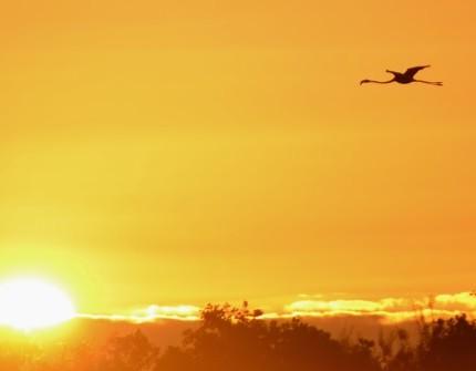 Galapagos Photos A magical sunset in the Galapagos Islands